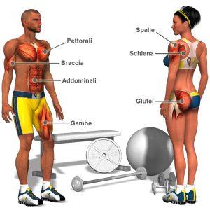 Allenamento Massa muscolare: Come allenarsi